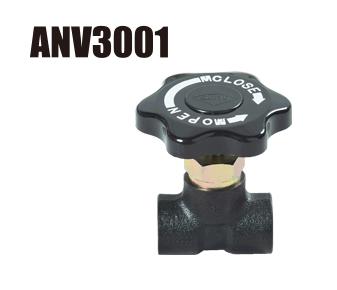 anv3001